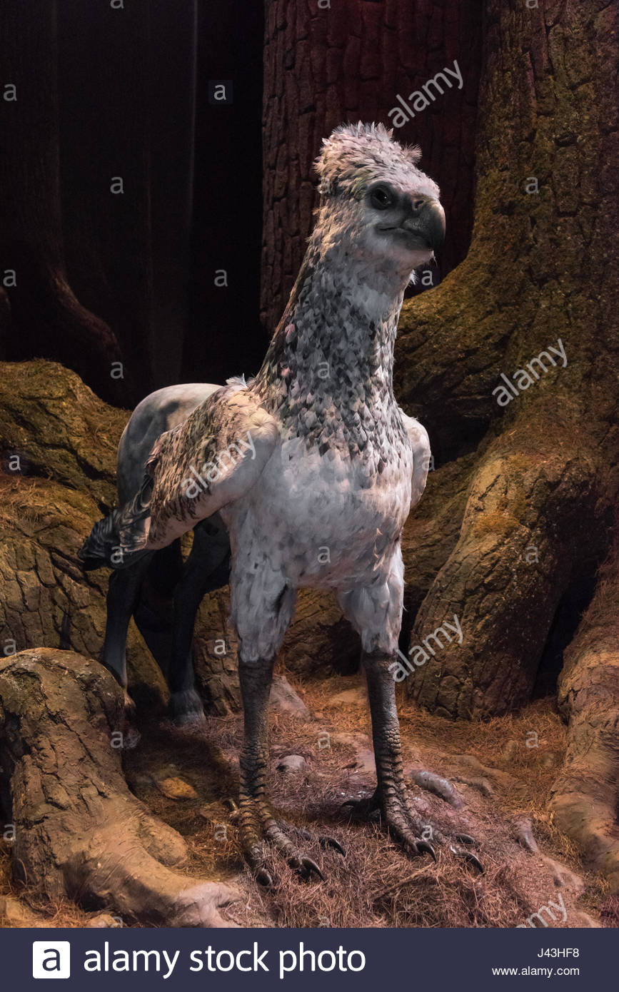 Hippogriff Stock Photos Hippogriff Stock Images   Alamy 867x1390