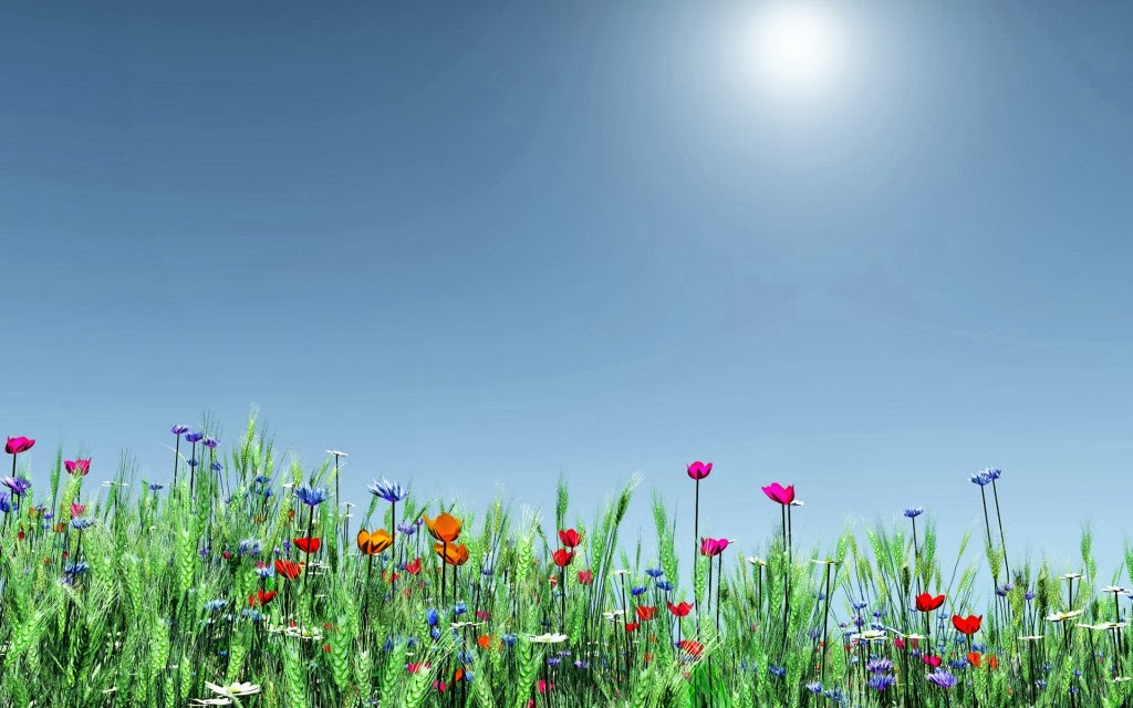 nature celebrates spring wallpaper for 1440x900 widescreen 606 8htm 1024x640