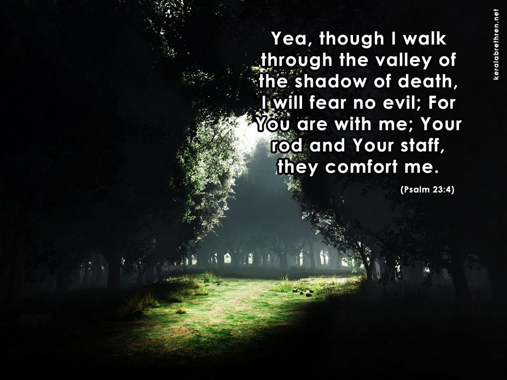 Psalm 23 4 Wallpaper As desktop background 1024x768