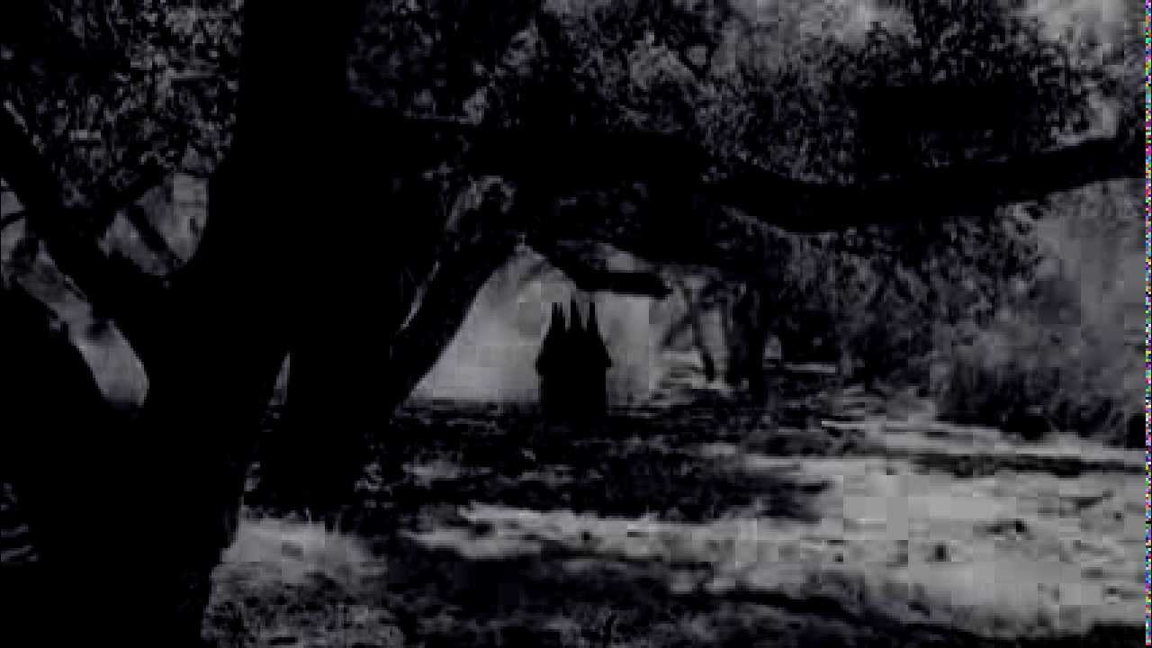 Free Download Ahs Coven Main Title 1280x720 For Your Desktop