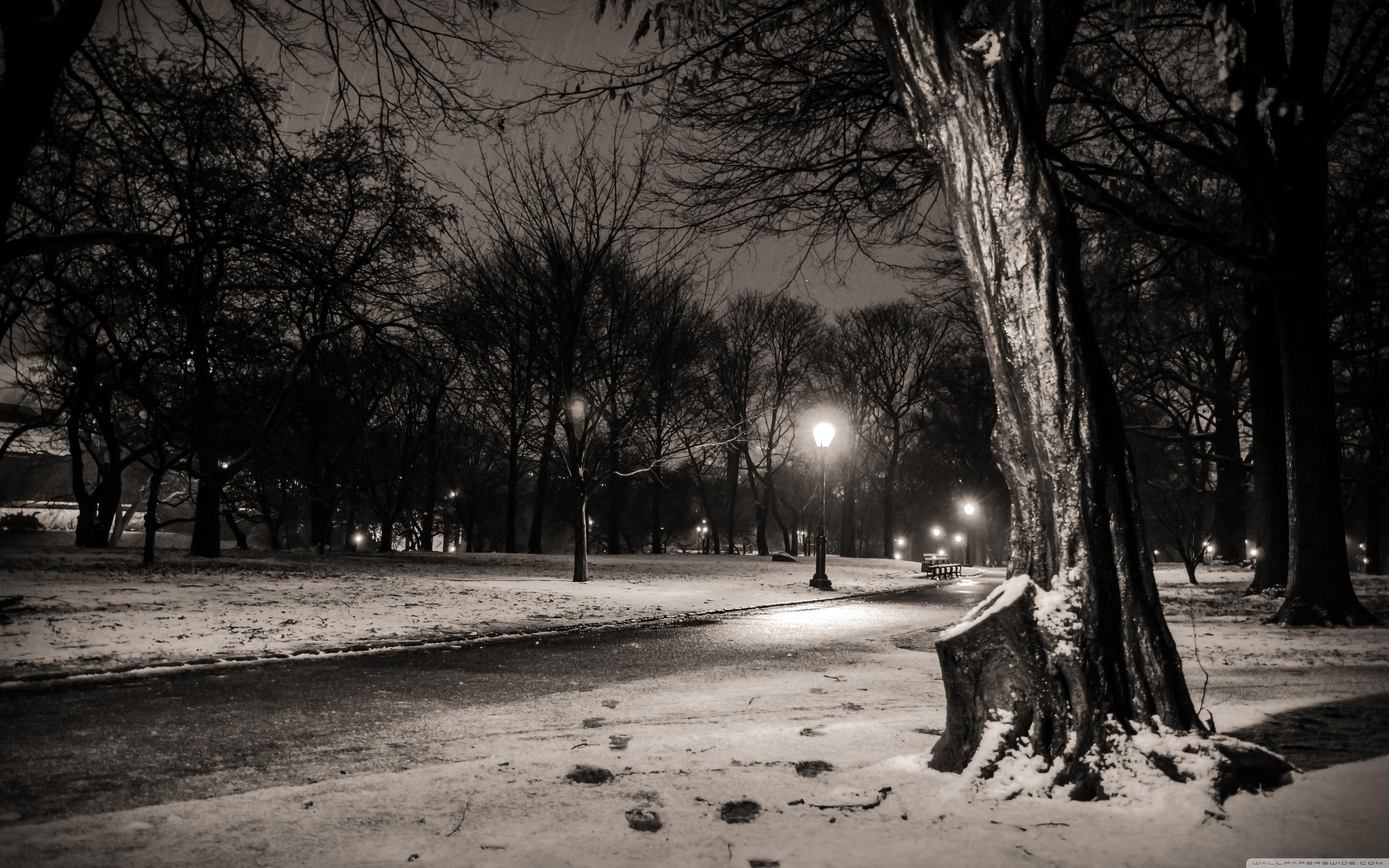 New York City Central Park Footsteps 4K HD Desktop Wallpaper 3840x2400