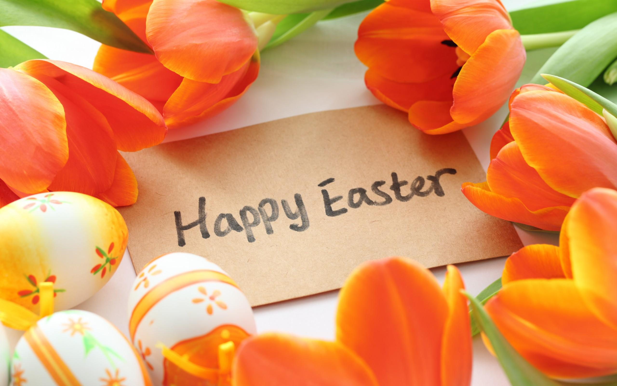 Happy Easter Day Wallpapers HD Easter Images 2560x1600
