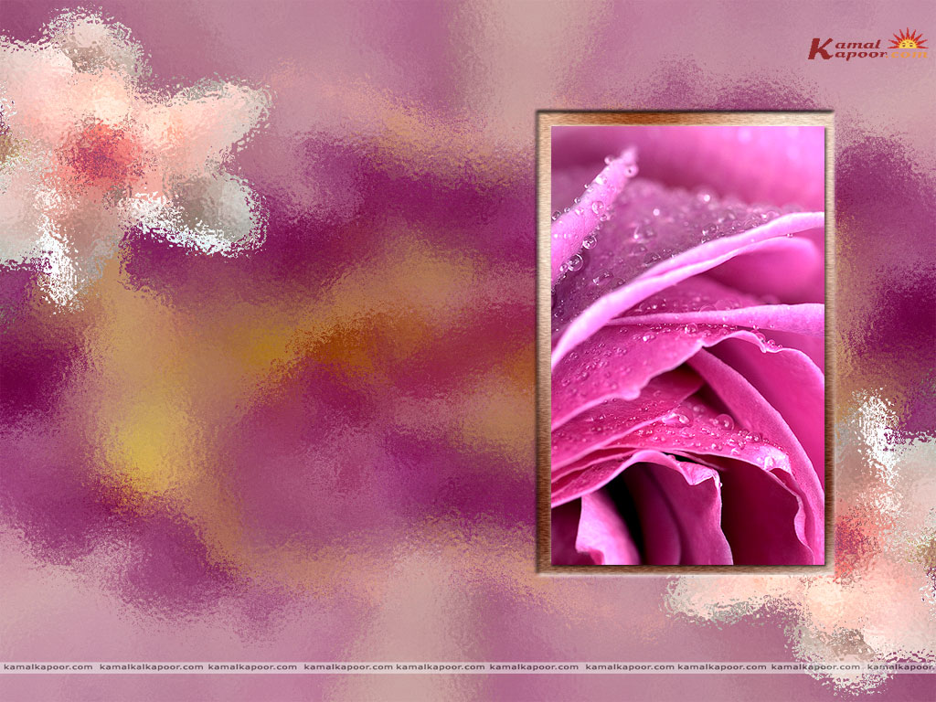 Sunday 25 September 2011 1024x768