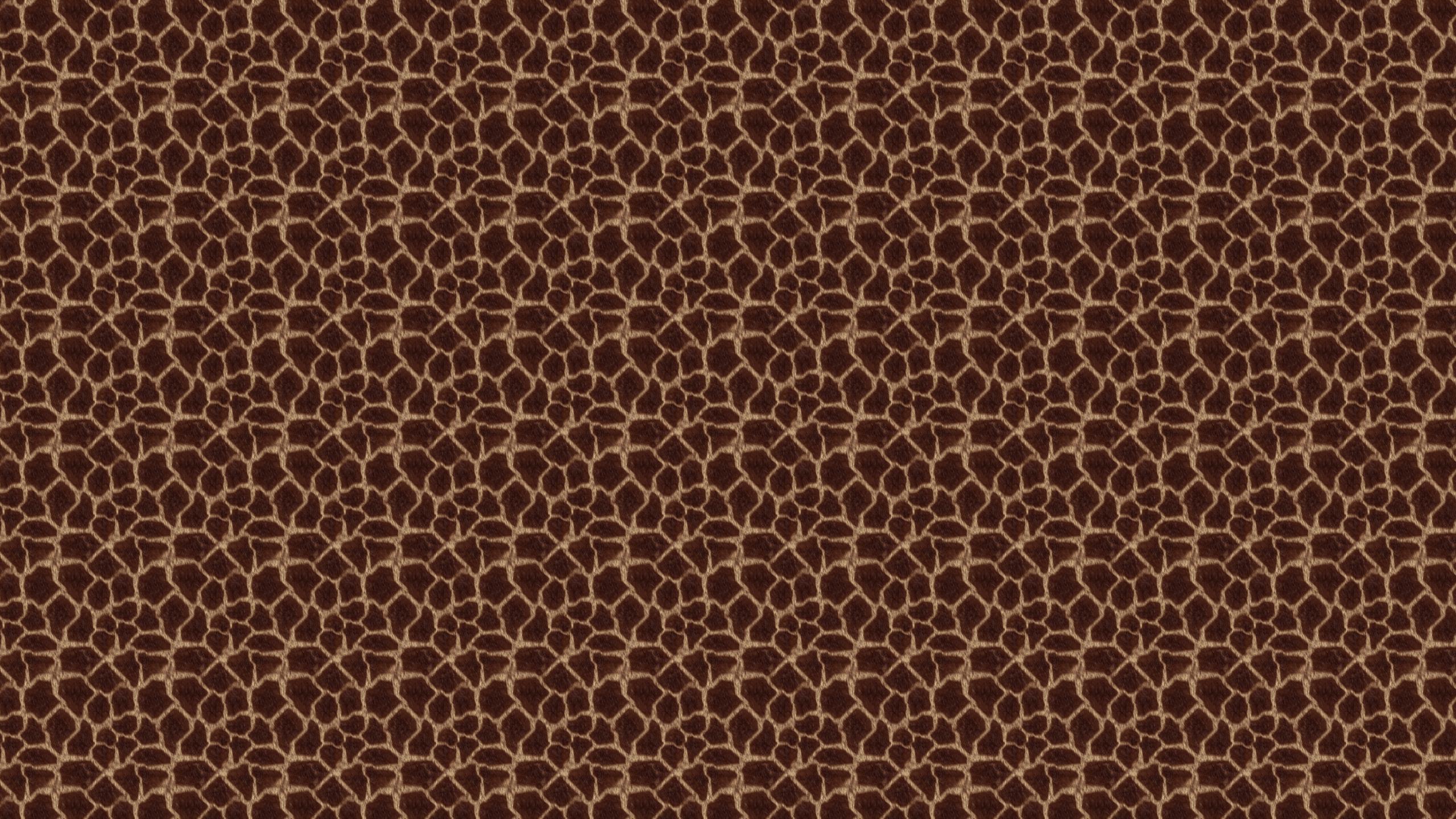 Animal Print Desktop Wallpaper is easy Just save the wallpaper 2560x1440