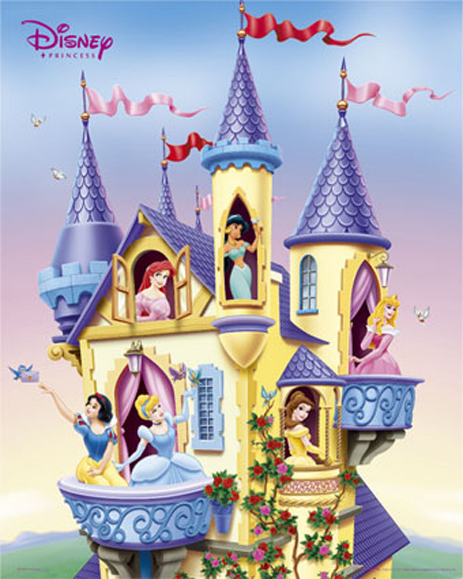 Disney com princess castle backgrounds disney princesses html code - Jpg 1600x2000 Disney Princess Castle Cartoon Background