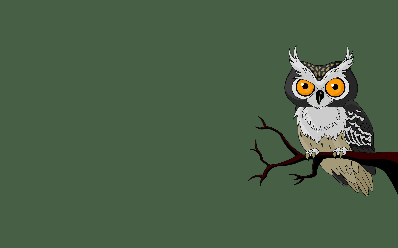 Owl branch owl bird green background minimalism wallpapers 1680x1050