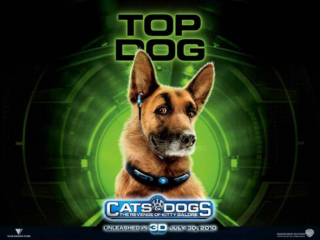 Police dog   Cats Dogs The Revenge of Kitty Galore wallpaper Police 1024x768