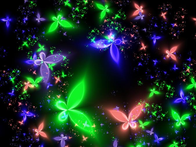 Neon Butterflies by Detani 675x508