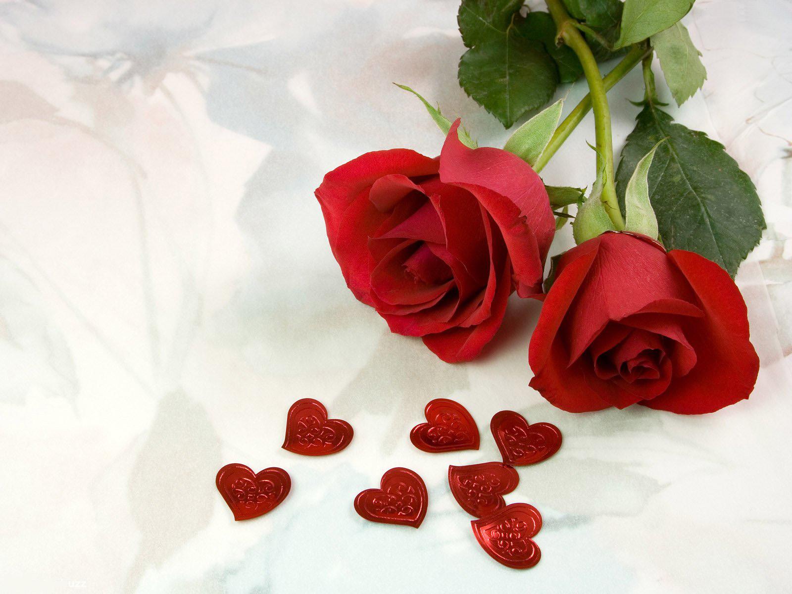 top desktop roses wallpapers hd rose wallpaper 1 two red rosesjpg 1600x1200