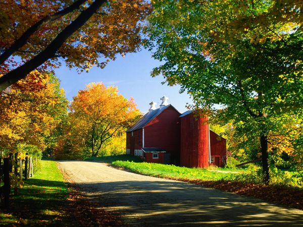 Vermonts fall colors and bucolic country scenery draw leaf peepers 600x450