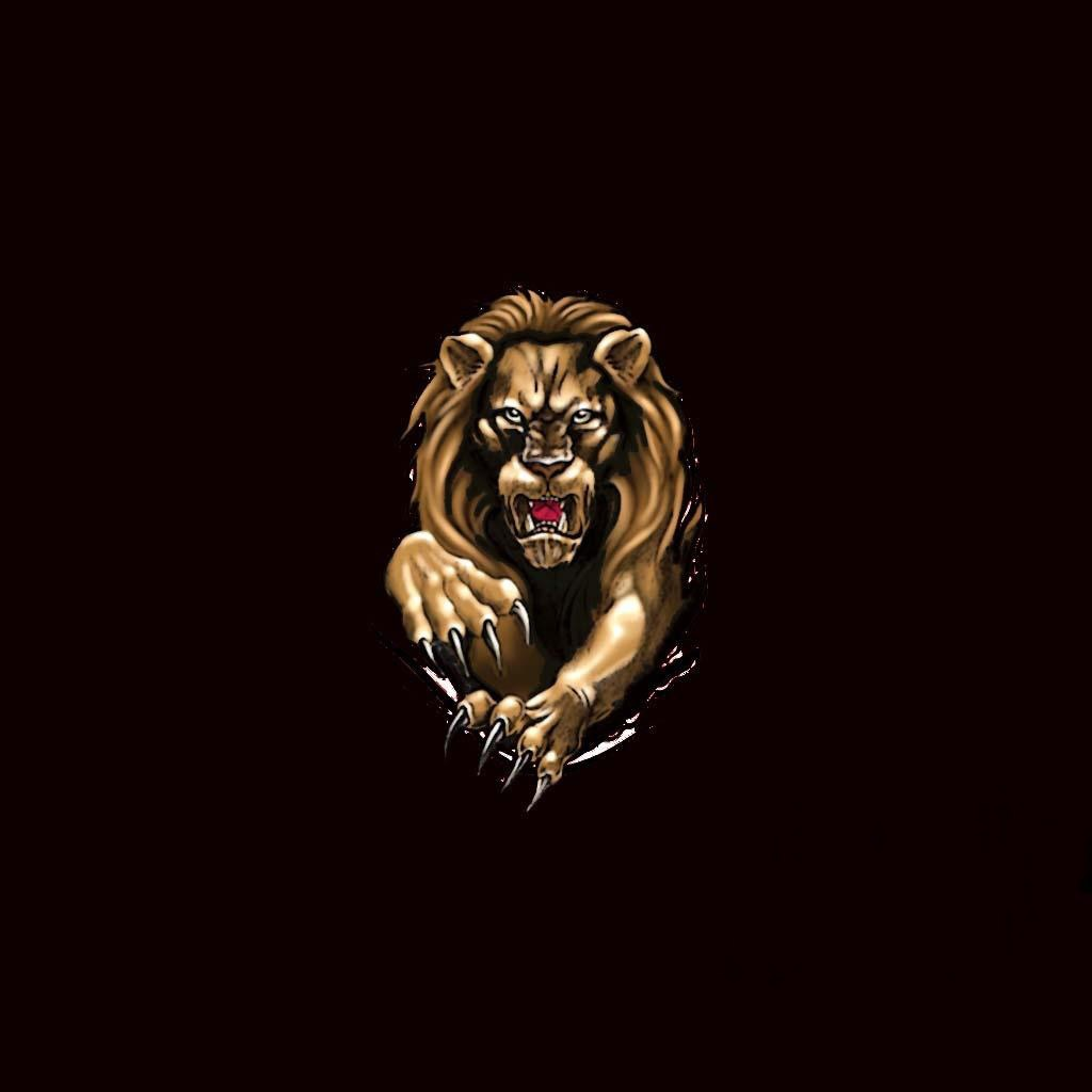 black lion wallpaper wallpapersafari