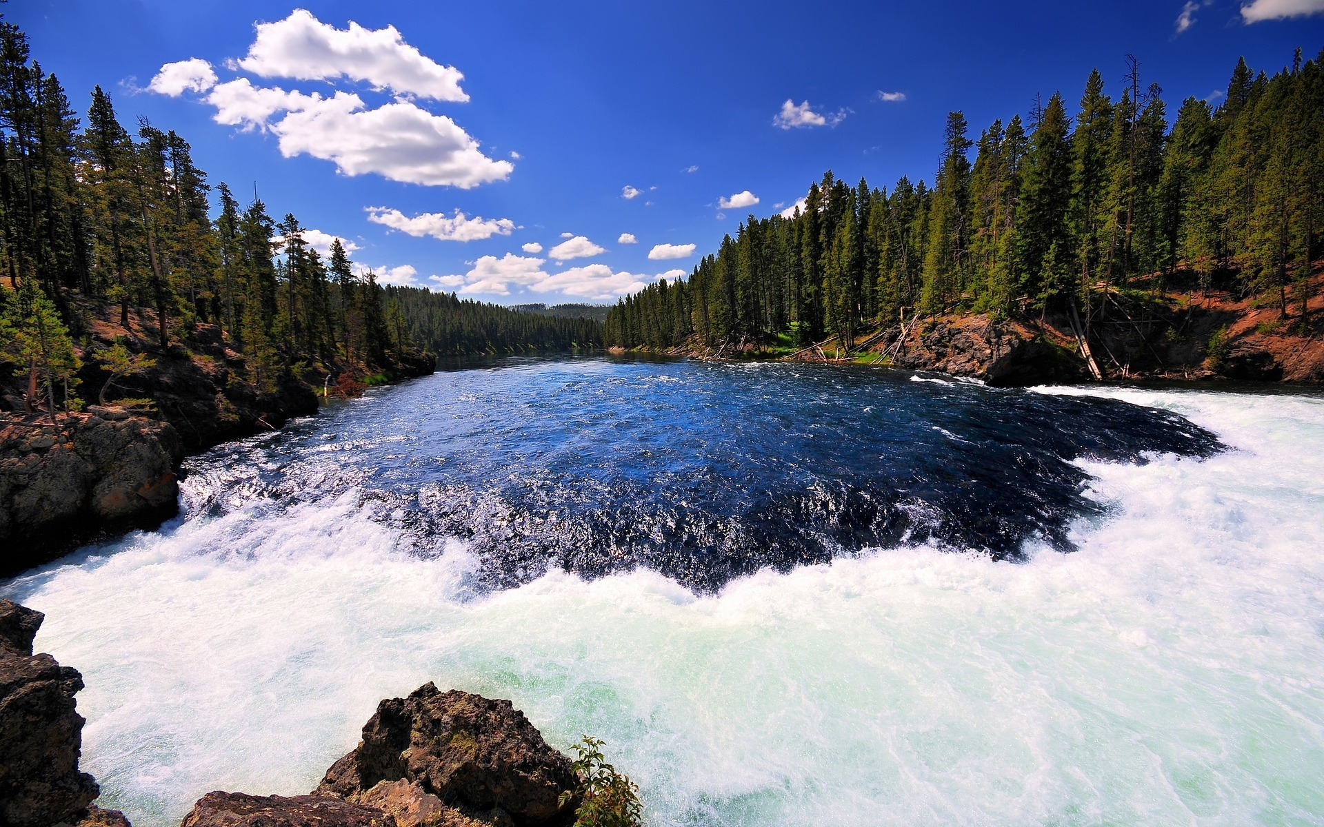 river Yellowstone Yellowstone national park wallpapers and images 1920x1200