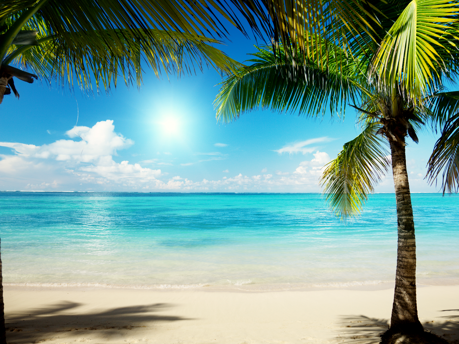Caribbean Summer Beach Background Wallpaper   HD Wallpaper 1600x1200