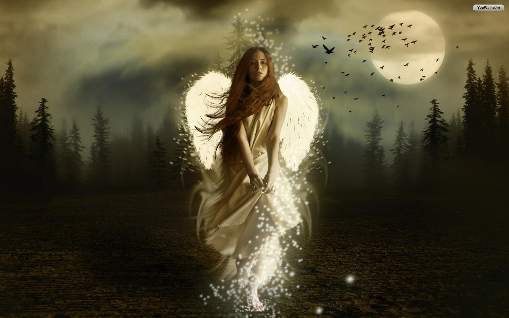YouWall   Dark Angel Wallpaper   wallpaperwallpapersfree wallpaper 1680x1050