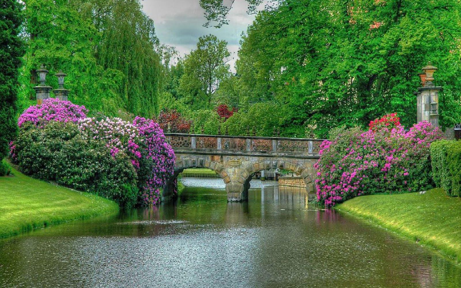 Beautiful Rose Garden Wallpaper beautiful rose gardens of the world - zandalus