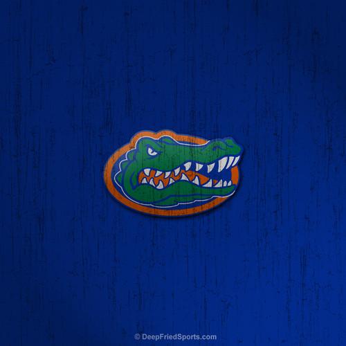 47 Cool Florida Gator Wallpapers On Wallpapersafari