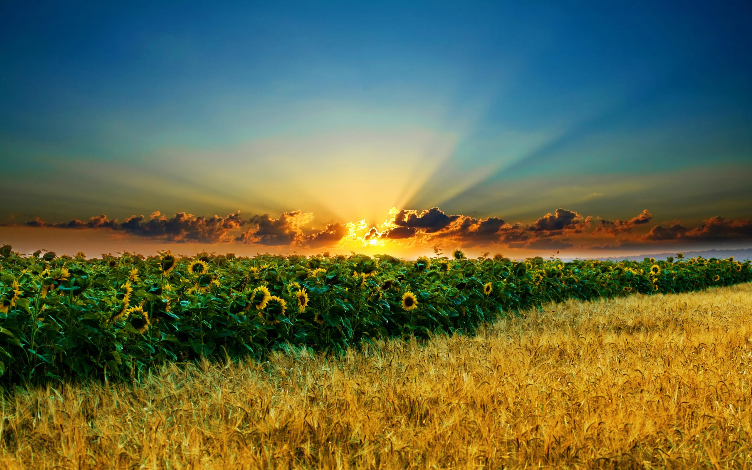free beautiful landscape desktop wallpaper 06 2010 wallpapers hd