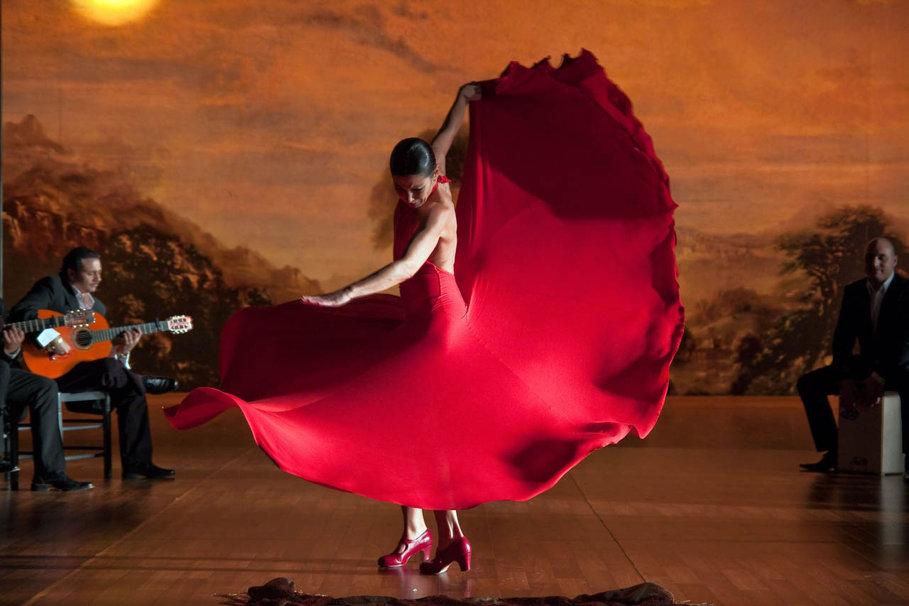 flamenco wallpaper wallpapersafari - photo #11