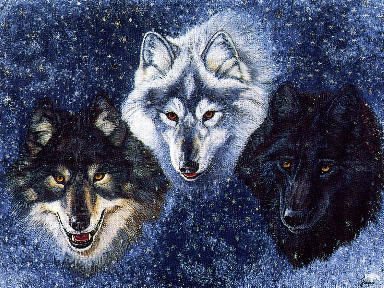 Wolves   Fantasy Wallpaper 28046344 1600x1200
