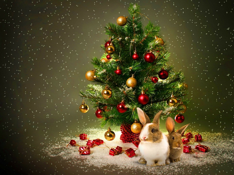 Free download balls bunny Nearer the christmas tree Abstract