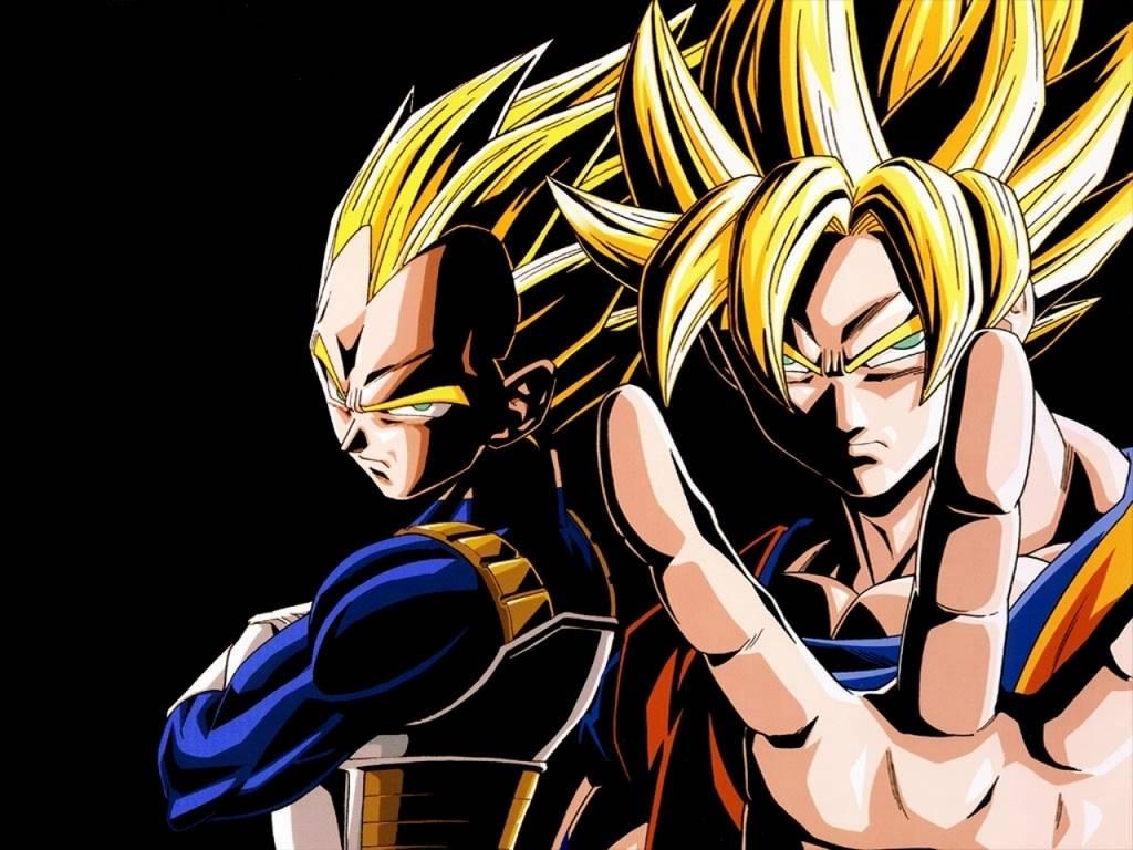 Goku and Vegeta   DragonBall z Wallpaper 1024x768