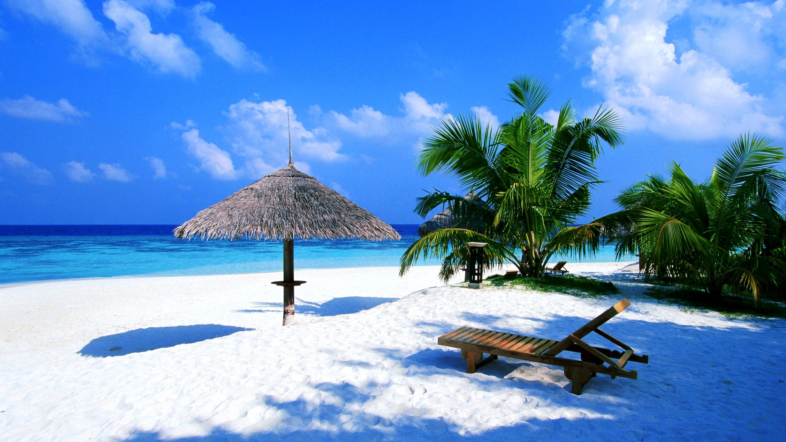 Desktop Wallpaper Beach Scenes To Warm Up Your Working Space 2560x1440