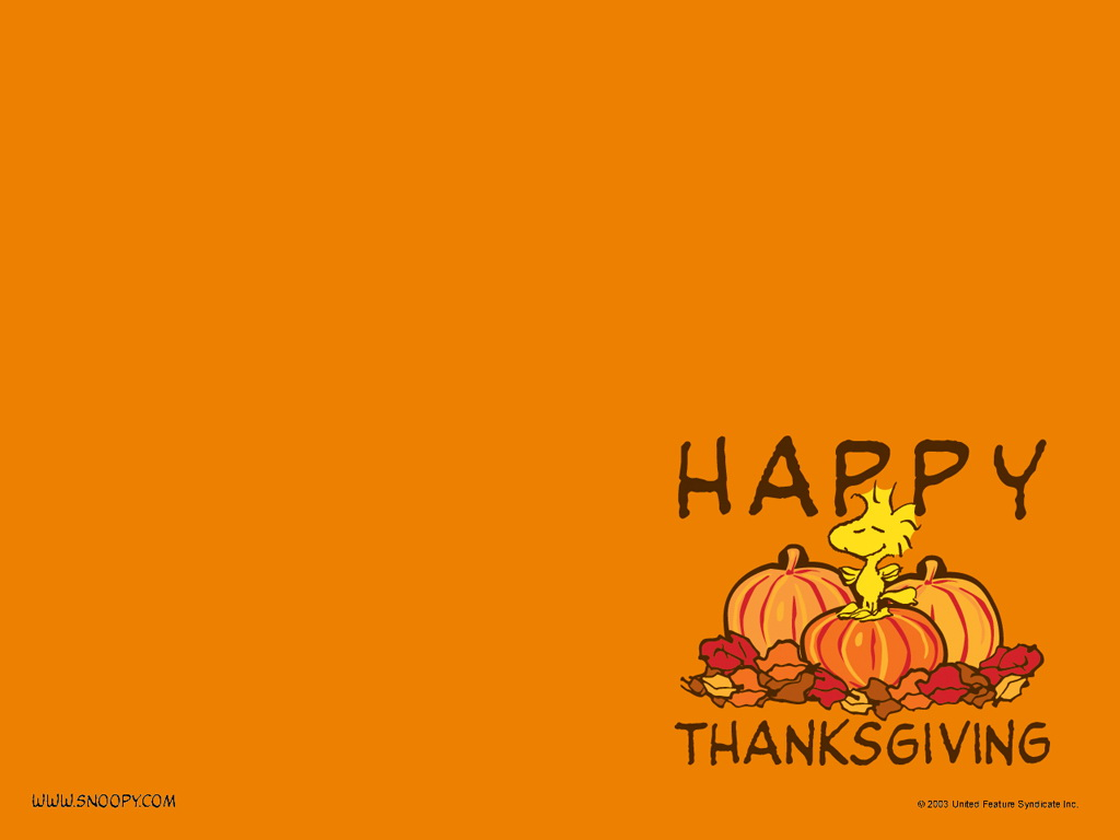 Thanksgiving Wallpapers Screensavers and Pictures Download for 1024x768