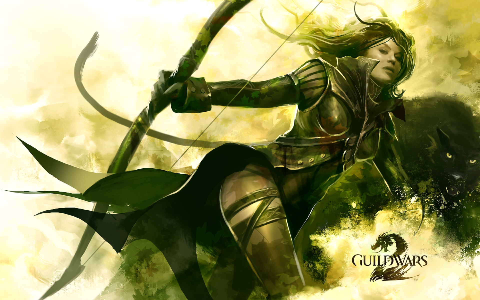 Guild Wars 2 wallpapers Guild Wars 2 stock photos 1920x1200