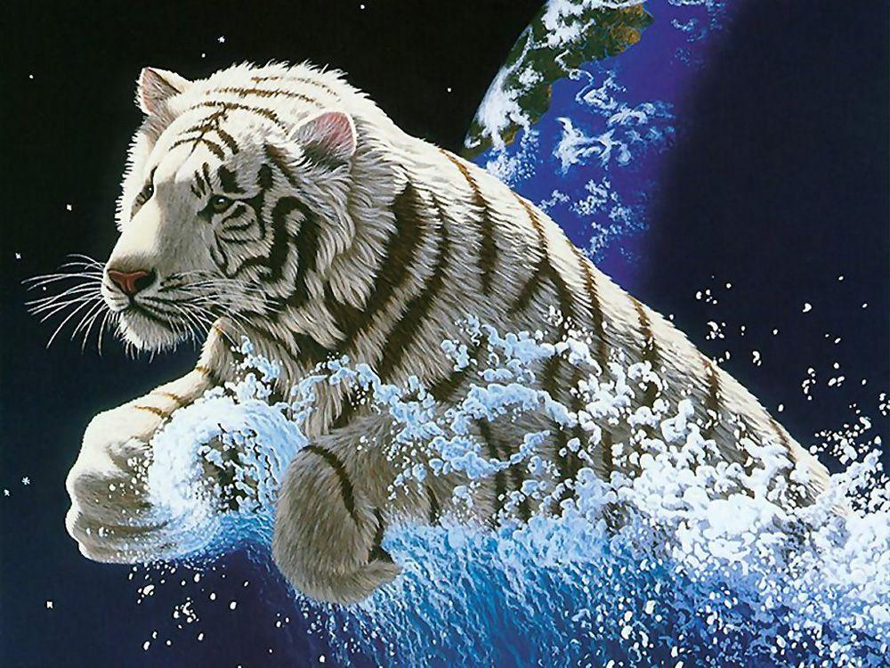 3D Animal Desktop Backgrounds Widescreen Wallpapers 1920x1080 1000x750