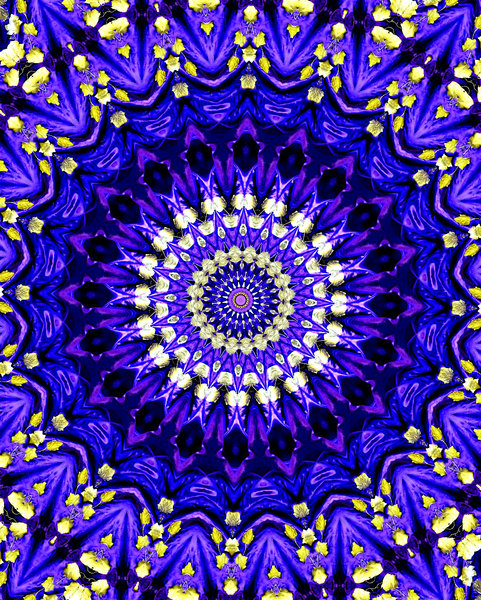 royal purple rosette abstract backgrounds textures patterns 481x600