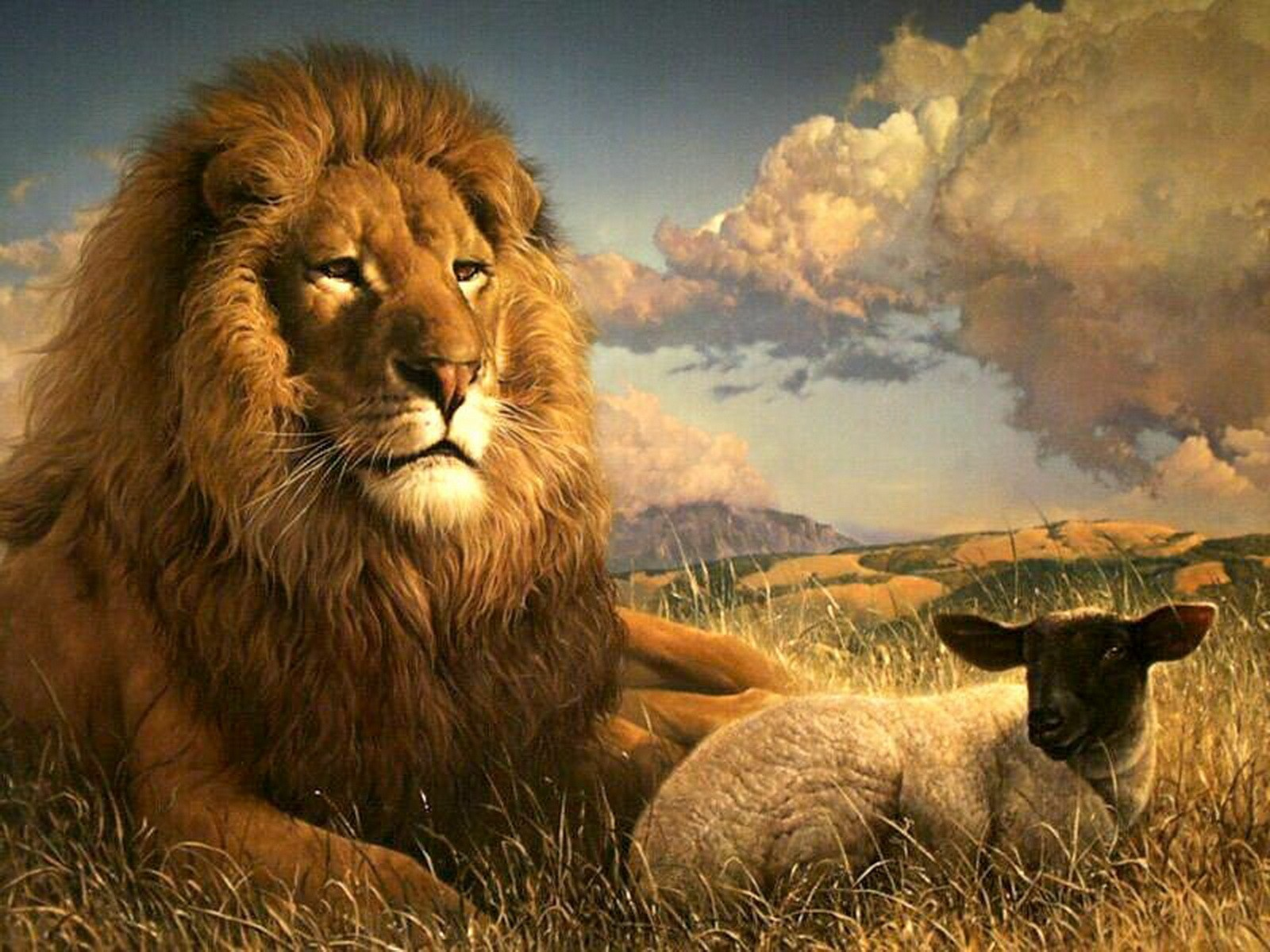 wallpapers lion backgrounds lion screensavers lion king wallpapers 1600x1200