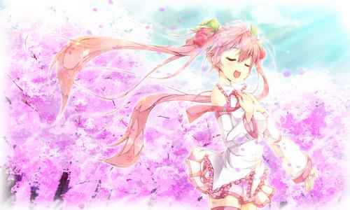 Free Download Miku Sakura Miku Vocaloid Yukinon Konachan Anime Wallpapers We 500x300 For Your Desktop Mobile Tablet Explore 46 Sakura Miku Wallpaper Sakura Miku Wallpaper Sakura Background Sakura Wallpapers