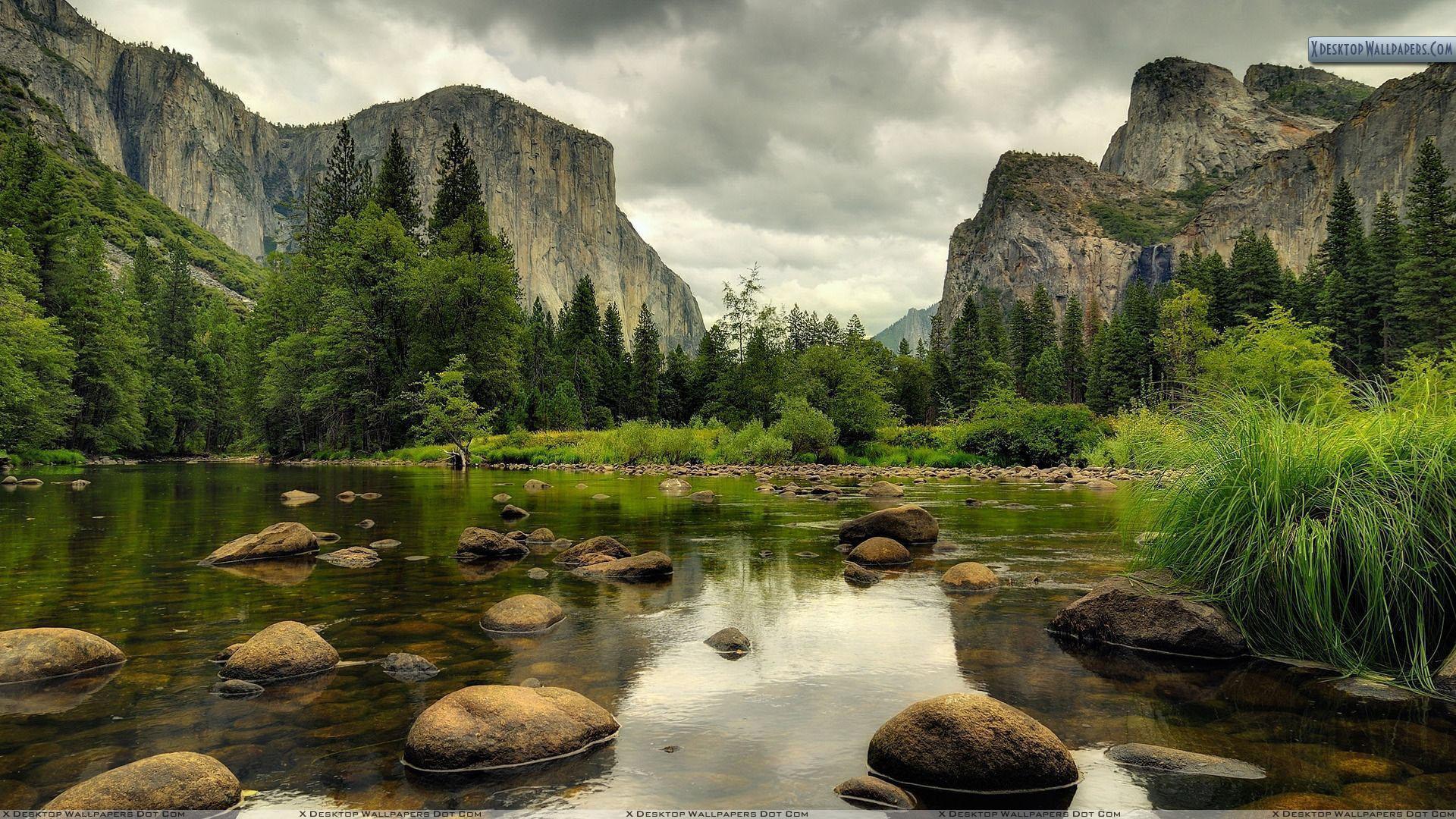 Yosemite National Park Nice Scene Wallpaper 1920x1080
