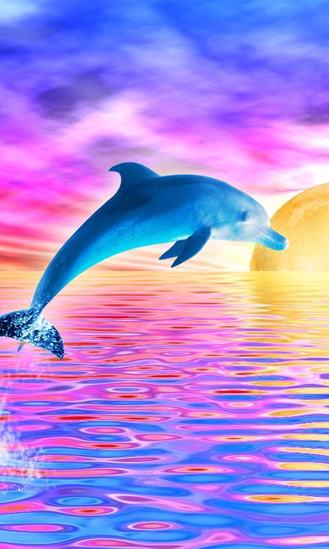 Rainbow Dolphin Live Wallpaper   screenshot 480x800