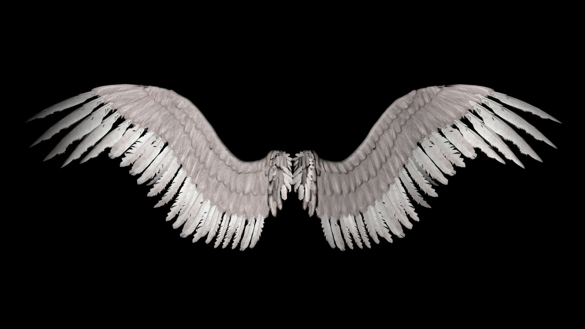 New Angel Wings by shadavar stock 1200x675