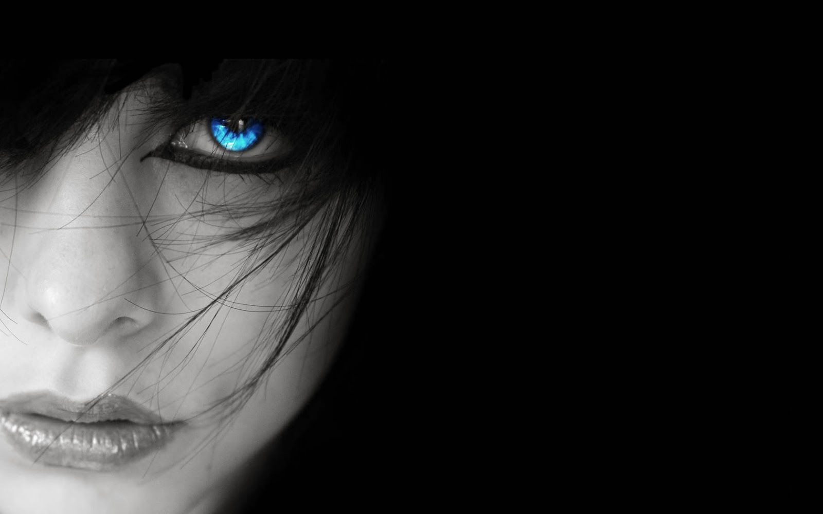 FREE HD WALLPAPER DOWNLOAD Blue Eyes Wallpapers 1600x1000