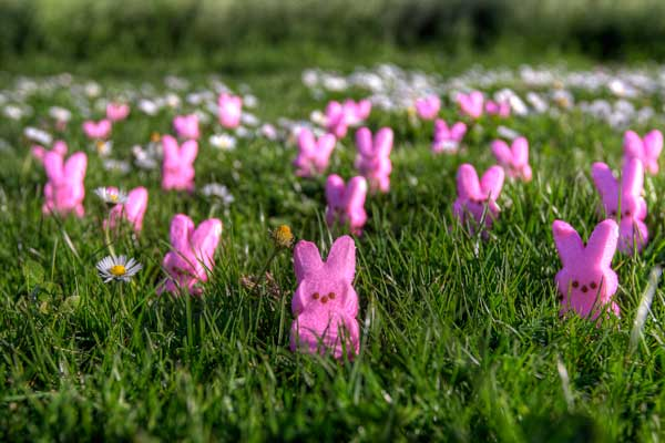 Inspired by Savannah Give the Gift of Peeps with Fun Easter Favors 600x400
