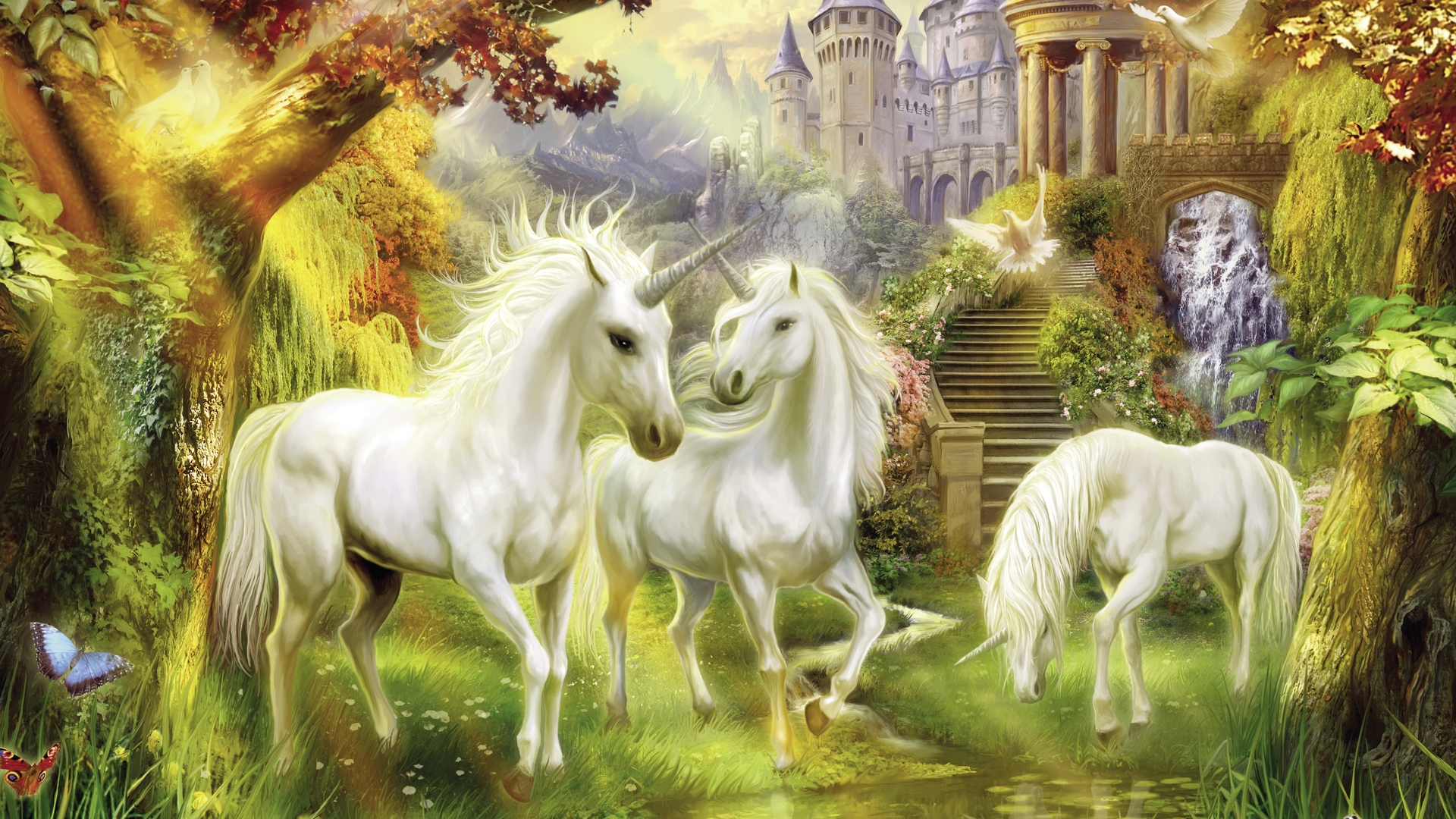 Unicorns   Wallpaper High Definition High Quality Widescreen 1920x1080