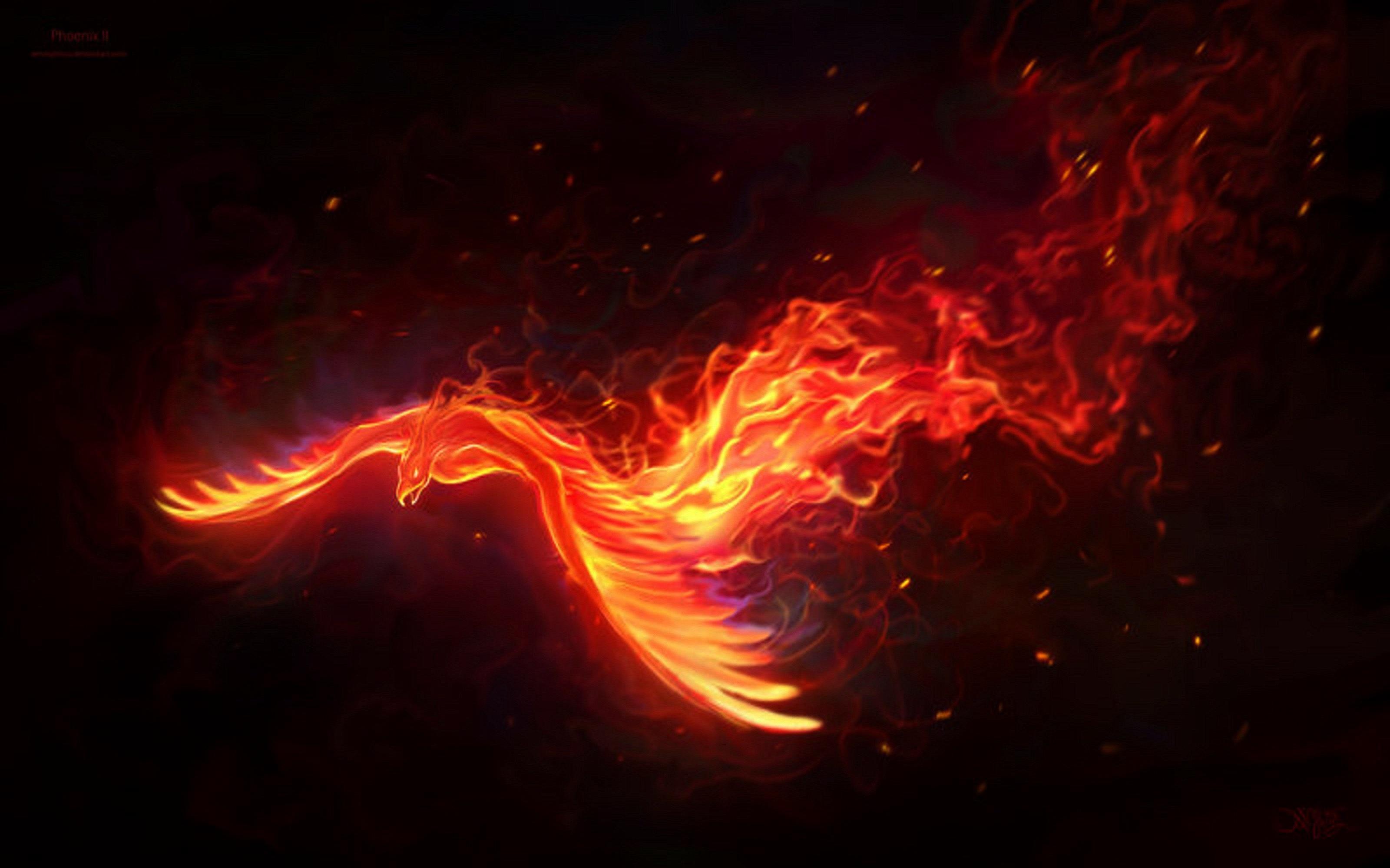 Download Phoenix Bird Backgrounds 3200x2000
