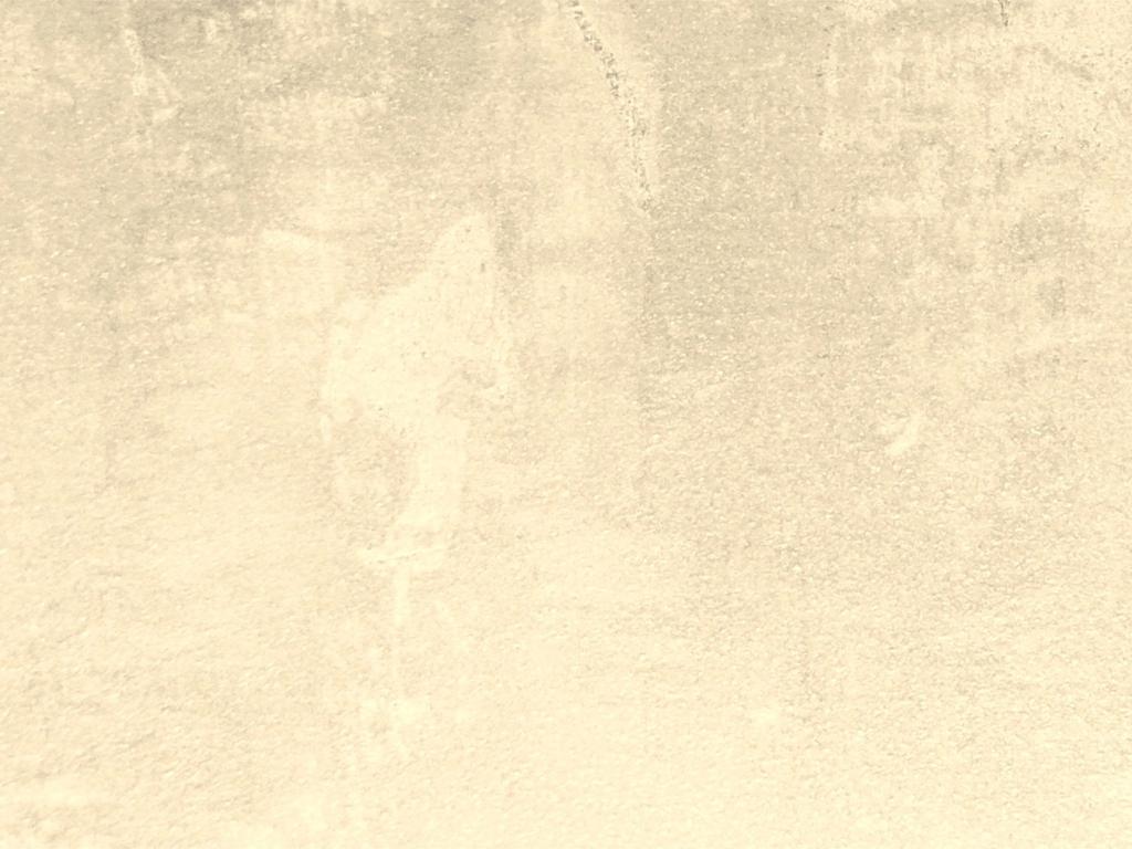 www findfreegraphics com wallpaper background 5 cream wallpaper htm 1024x768