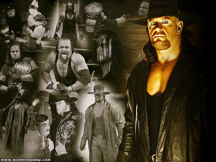 the undertaker download video