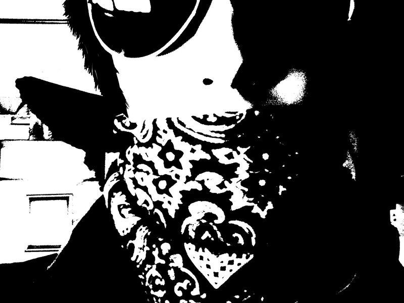 Black Bandana Wallpaper I have a black bandana bro by 800x600