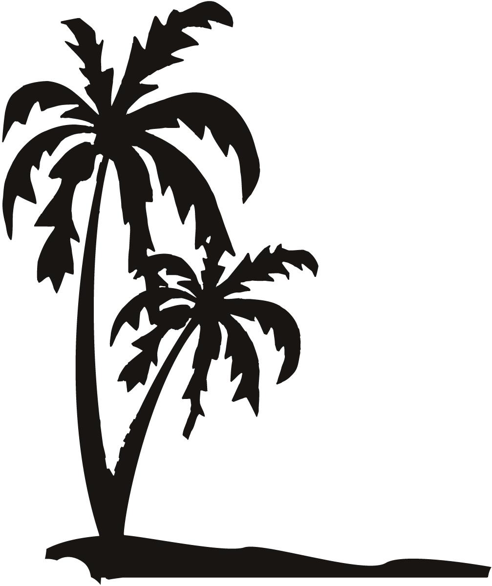 Palm Tree Wallpaper for Walls wallpaper wallpaper hd background 1007x1200