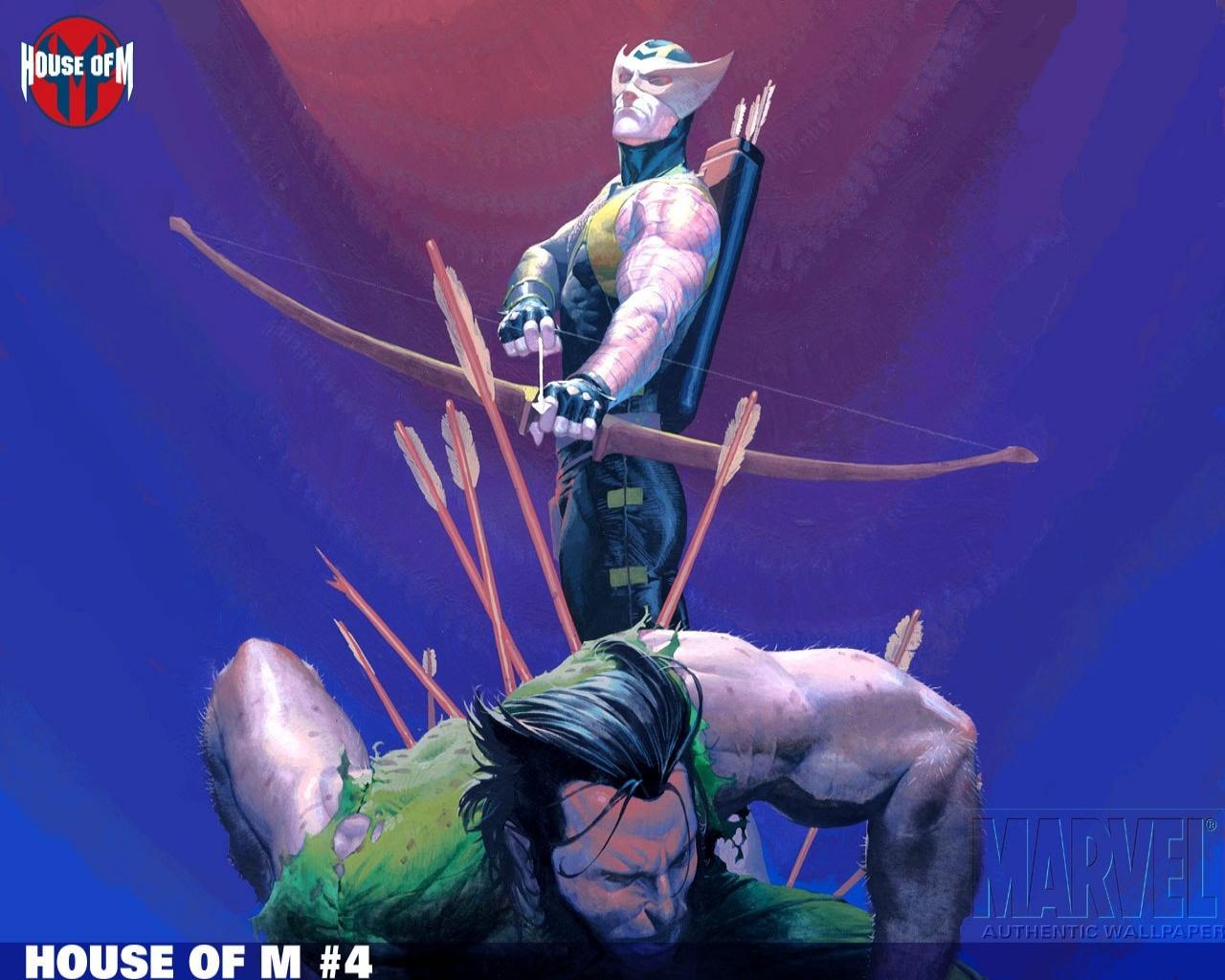 Hawkeye Wallpaper 1280x1024
