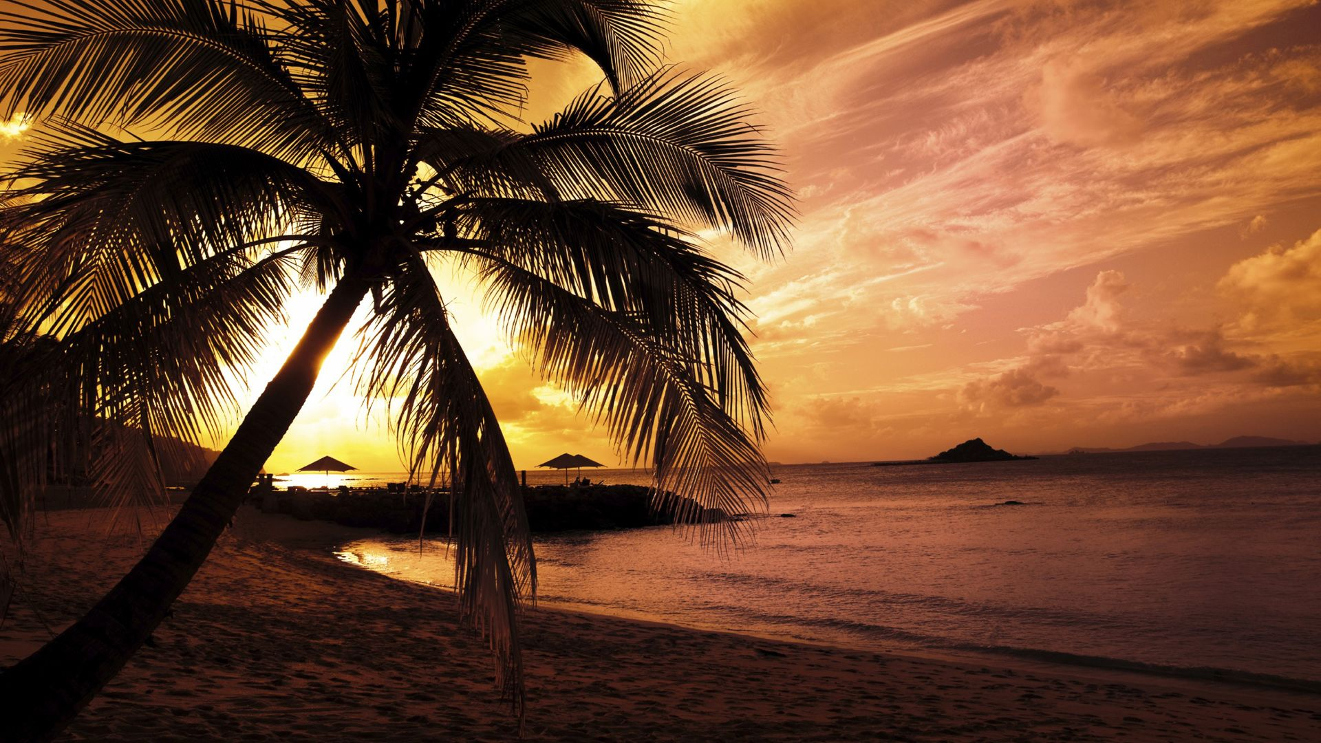 Tropical beach scenery at night Wallpapers 1920x1080