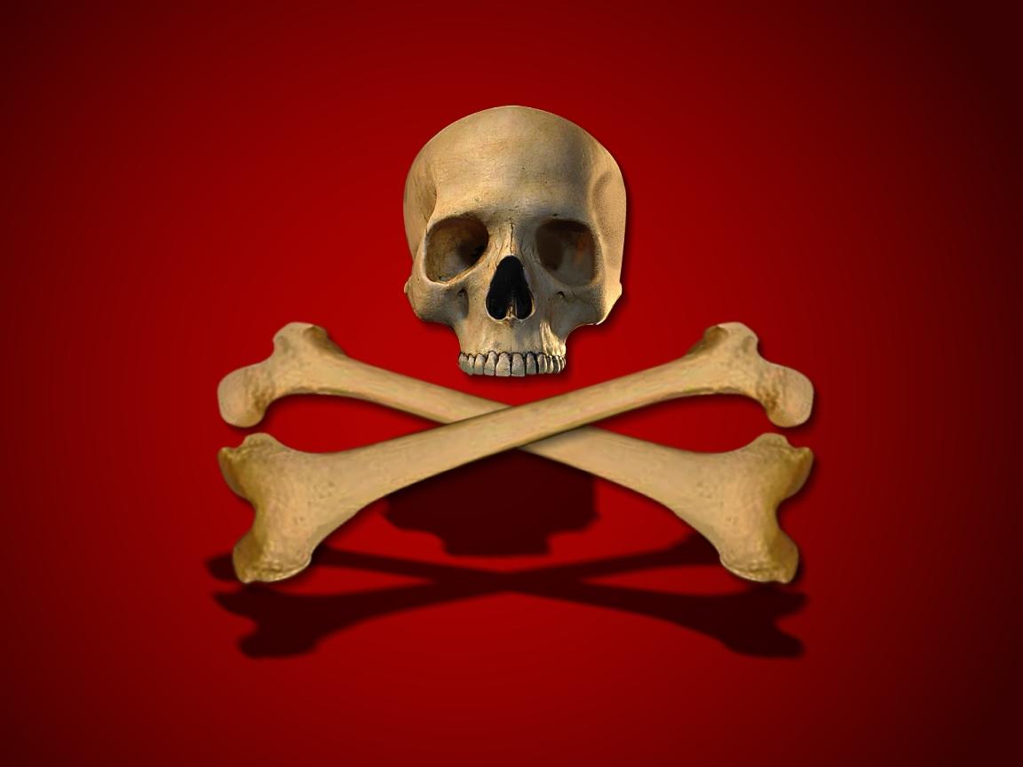 lea michele Skull crossbones wallpaper 1152x864