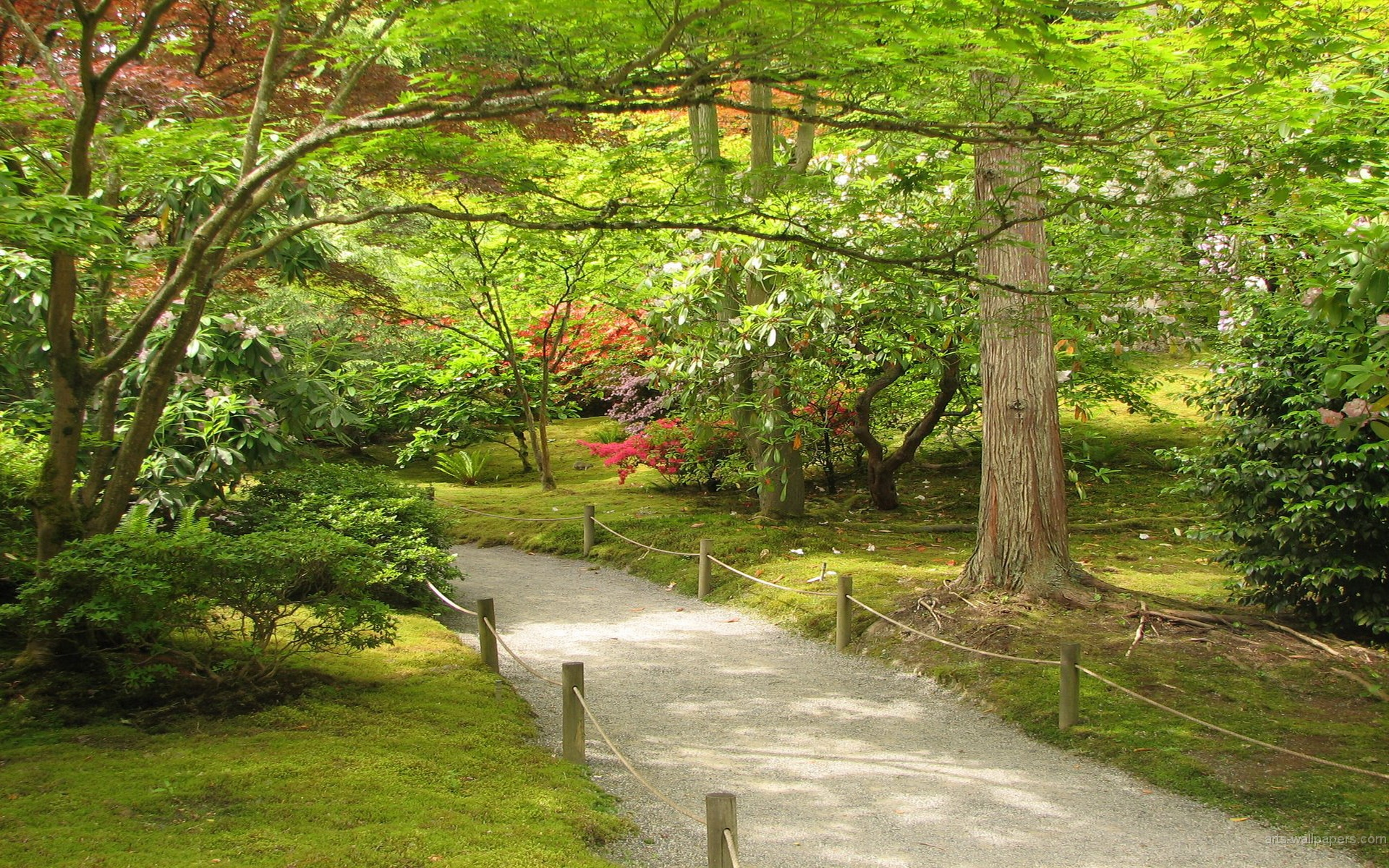 Japanese Garden Art Prints Art Wall And Posters Wall Murals Buy A .