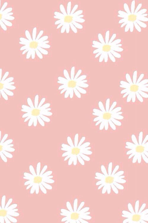 49 Daisy Iphone Wallpaper On Wallpapersafari