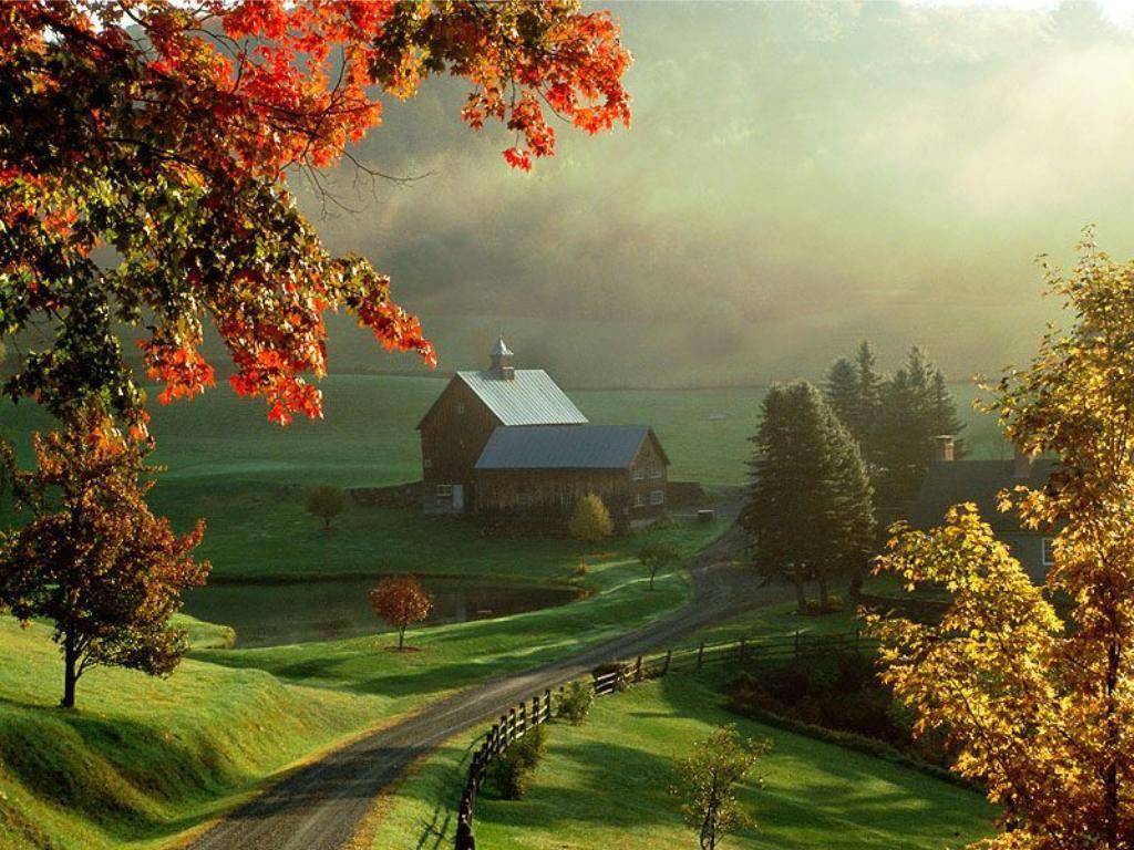 Autumn Landscaper Computer Desktop Wallpaper Fall Bright Colored 1024x768
