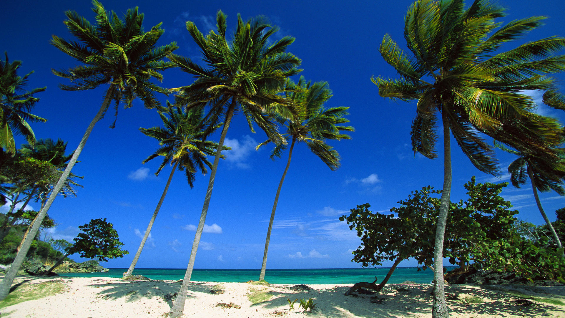 Dominican wallpapers wallpapersafari - Dominican republic wallpaper ...